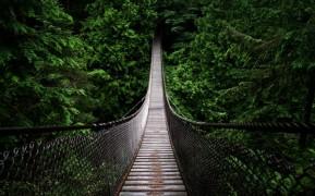 narrow-wooden-bridge-backgr
