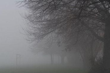 fog-PrissickJPG