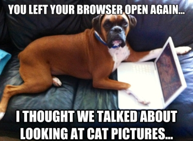 funny-dog-memes-you-left-your-browser-open-again-i-thought-we-talked-about-looking-at-cat-pictures