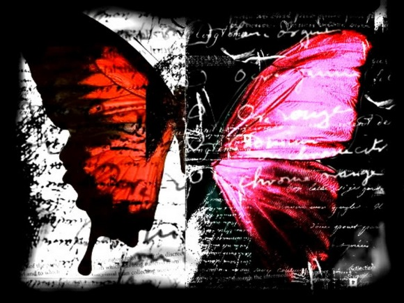 gothic_butterfly_wallpaper_mq3ph