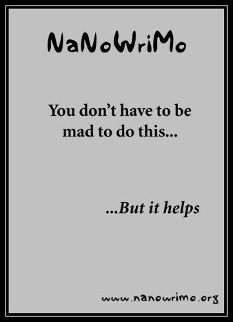 nanowrimo___poster_v_by_pianochick66