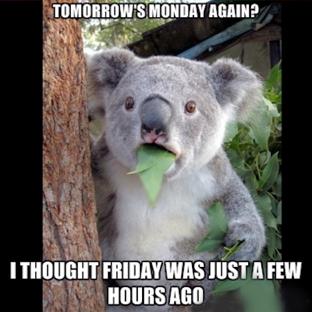 91665-Tomorrow-s-Monday-Again