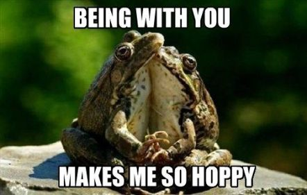 03cd12aaaa8b827231c9fa7823751621--funny-frog-pictures-funny-pictures-of-animals