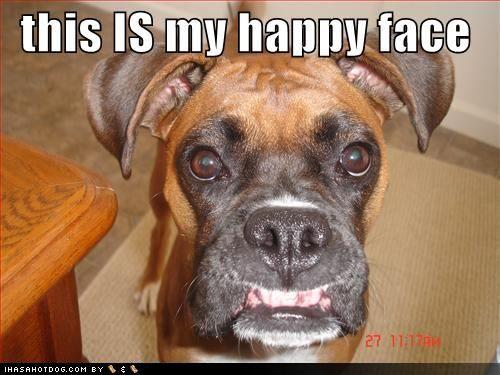3ec5df7362fcca54ae39502c59460149--silly-faces-happy-faces
