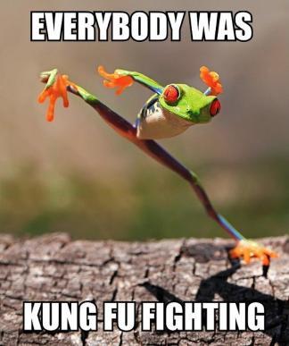 funny-kung-fu-frog