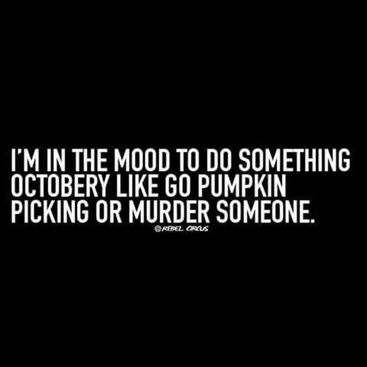 7ec9ee47724b39ee4552d315ef69636c--pumpkin-picking-so-funny