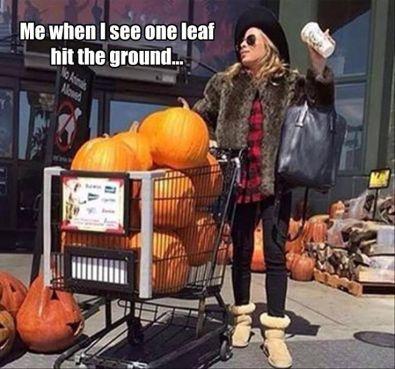 a024f6820a93e32e99ce95b653269561--fall-things-fall-pumpkins