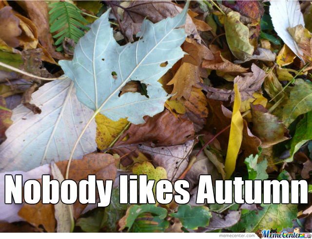 autumn-does-not-like-autumn_o_2397585