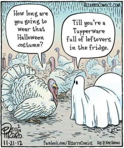 5c884a638375973d453c7174bf1f7ab5--turkey-jokes-turkey-cartoon