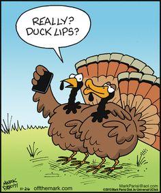 c96099b48c32a7bd658ef26c1deccec6--turkey-meme-funny-turkey