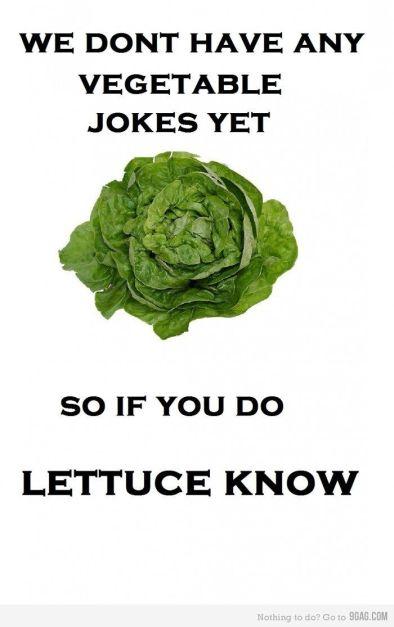 cfb2e3fe4a59cdc0221dd34c7791c903--corny-food-jokes-cheesy-jokes
