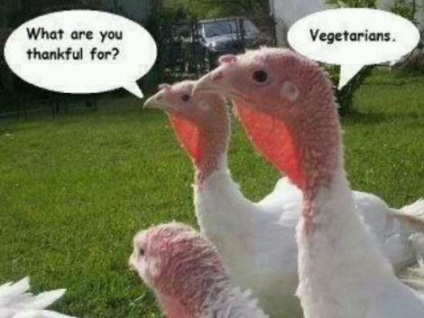 d17f42fda5355ee824e994a70db87fc4--thanksgiving-humor-vegetarian-thanksgiving