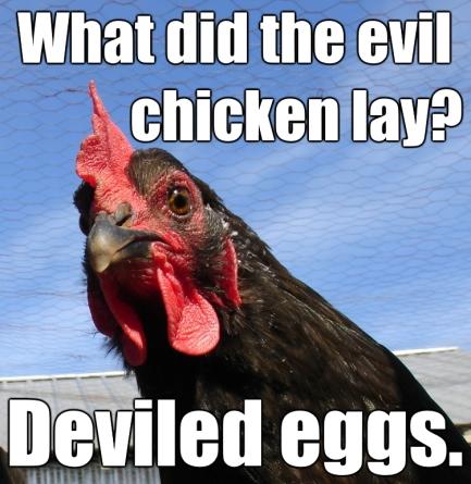 evil-chicken.jpg