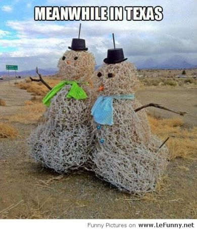 Funny-winter-in-Texas
