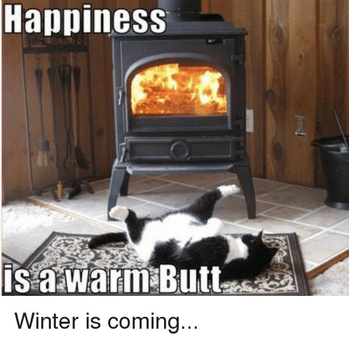happiness-winter-is-coming-28559677