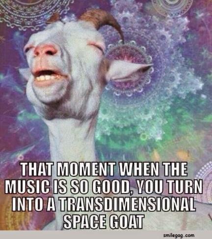 Goat meme 7
