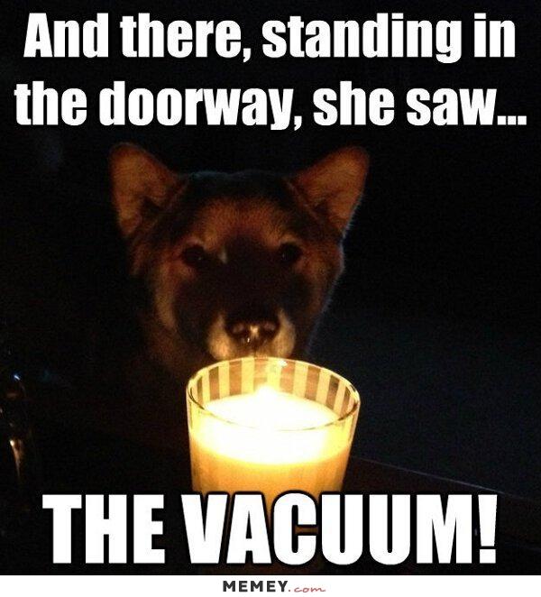 funny-scary-dog
