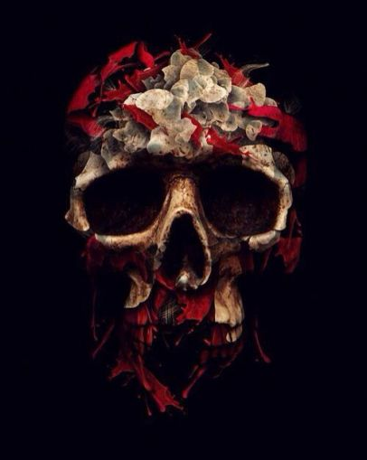 bff450bf7fd801d531b66e2f38cc4447--flower-skull-skull-illustration